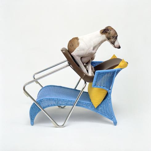 Daan_op_br_en_bl_stoel.3.jpg