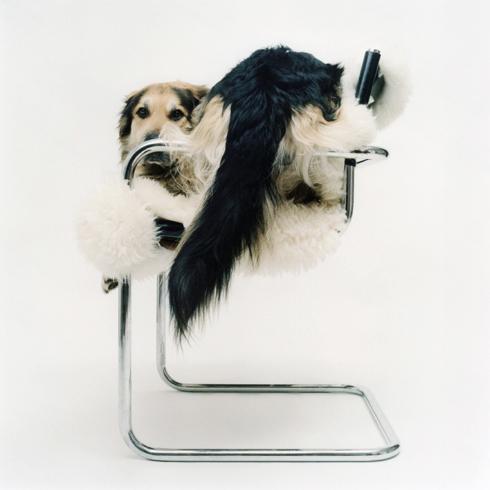 Jacob_op_moderne_stoel.2.jpg