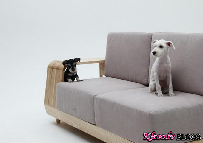 Dog-House-Sofa2-640x_1.jpg