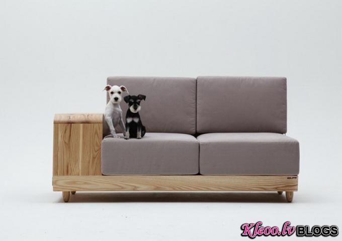Dog-House-Sofa2-640x_4.jpg