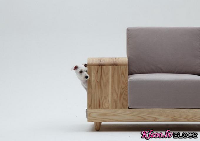 Dog-House-Sofa2-640x_5.jpg