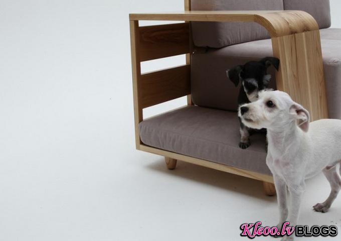 Dog-House-Sofa2-640x_7.jpg