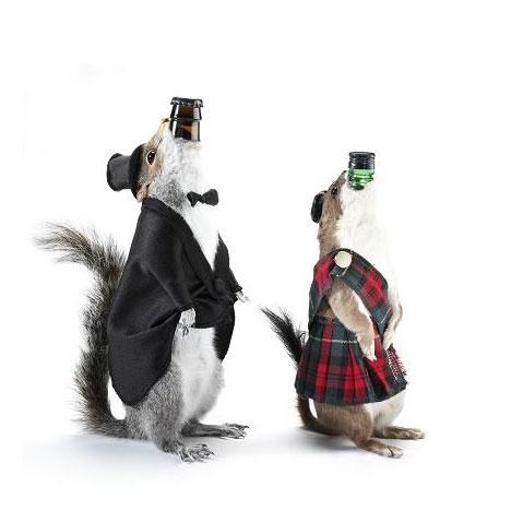 Пиво в чучелах животных