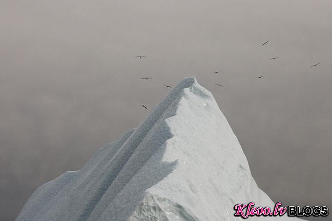 melt-portrait-of-an-iceberg-08_.jpg