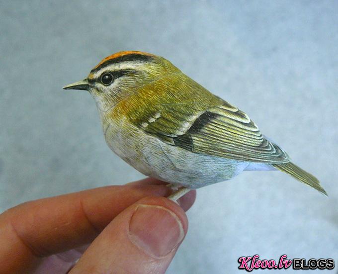 5dbird_.jpg