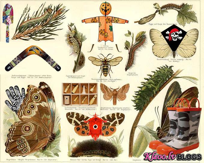 Весенняя коллекция Hobbyhorse.ru