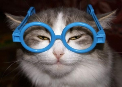 Kā brilles var ietekmēt imidžu