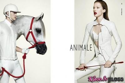Animale rudens 2011.