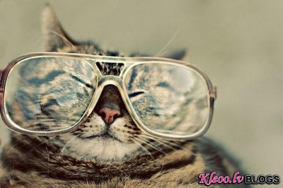 Minkas un brilles