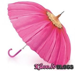 Fifīgs lietussargs!