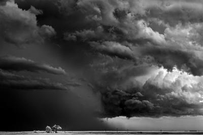 Mitch Dobrowner ainavas.