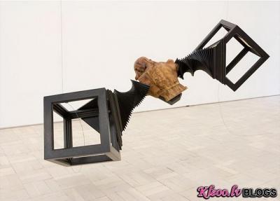 Mākslinieks Wim Botha.