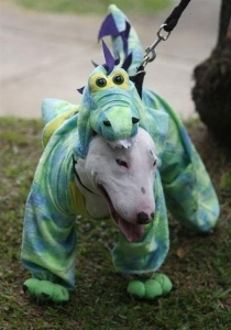 Halloween dzīvnieku parāde