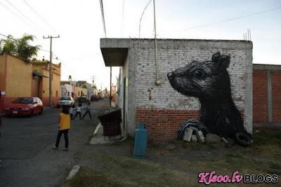 Ielu mākslinieks  ROA Meksikā.
