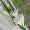 Moderna tendence: līgavas ziedu pušķis no lilijām