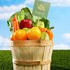 5 ieteikumi rudens uzturam