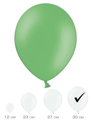 10 gab, Zaļš, pasteļtonis, 30 cm