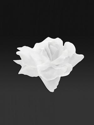 24 gab, Rozes, baltas, 9 cm