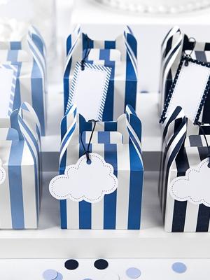 6 gab, Saldumu vai dāvanu kastītes, Lidotājs