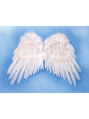 Angels wings, white, 53 x 37cm