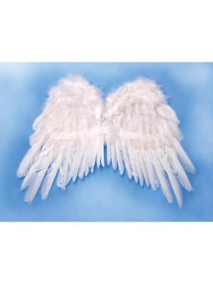 Eņģeļa spārni, balti, 53 x 37 cm