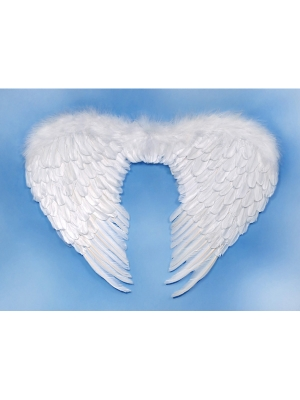 Angels wings, white, 76 x 55cm
