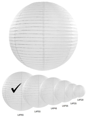 PD-LAP65-008