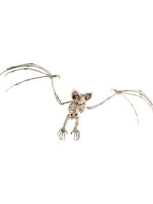 Sikspārņa skelets, 7 cm x 32 cm x 72 cm