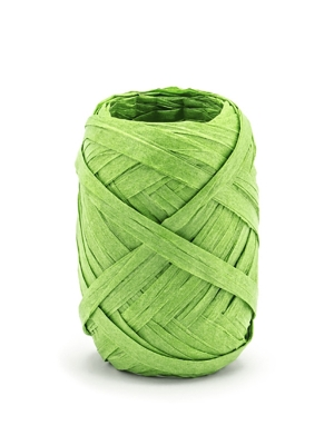 Raffia ribbon, 5mm/10m, green