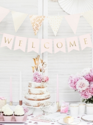 Banner Welcome, light pink, 15 x 95 cm