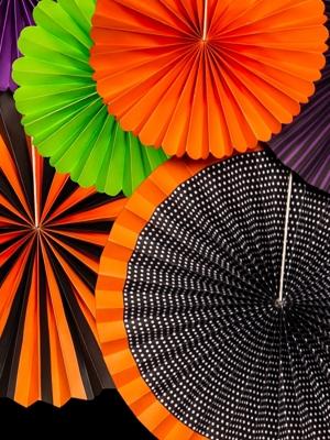 6 gab, Dekoratīvās rozetes Fokuss Pokuss, krāsaini, 40 cm, 25 cm
