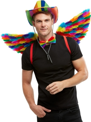 Rainbow Feather Wings, 80 cm