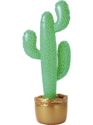 Piepūšamais kaktuss, 90 cm
