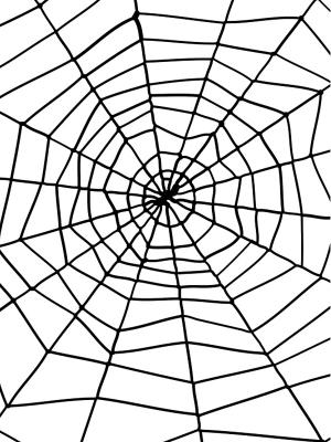 Zirnekļa tīkls ar zirnekli