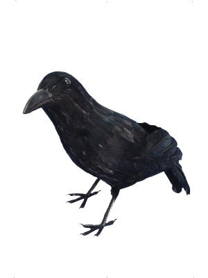 Realistic Feathered Crow, 33 cm