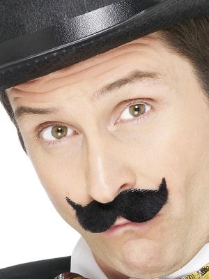 Edvardiāņu ūsas